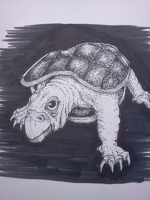 A Turtle Named Puppy Richie Montgomery Thumbnail